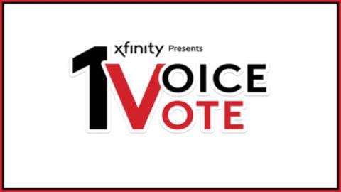 Xfinity 1 voice 1 vote